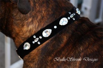 Black velvet collar with large Swarovski crystals elegantly modeled by Red Baron